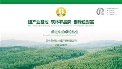 【商业计划书PPT】卓轮林业融资计划PP